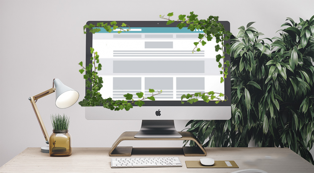 Why You Want to Have Evergreen Content on Your Website